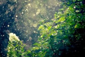 post august 2014 rainburst