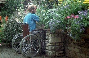 physical disabilties march 2015
