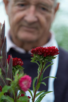 Rebecca Smith - London - nature studio - mindfulness - gardening therapy – garden design– gardening - horticulture - nature – older people – dementia